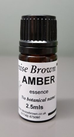 Amber Essence (2.5mls) Oil