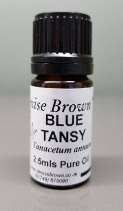 Blue Tansy (2.5mls) Essential Oil