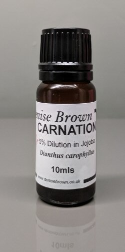 Carnation Absolute Dilution (10mls) Essential Oil