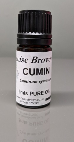 Cumin Seed (5mls) Essential Oil
