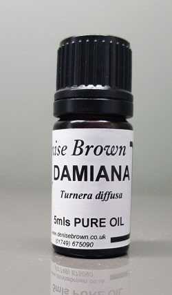 Damiana (100mls) Essential Oil