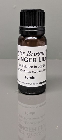 Ginger Lily Absolute 'TYPE' Dilution (10mls) Essential Oil