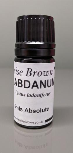 Labdanum Absolute  (5mls) Essential Oil