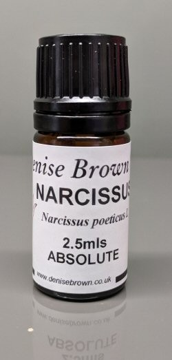 Narcissus Absolute (2.5mls) Essential Oil