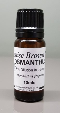 Osmanthus Absolute Dilution (10mls) Essential Oil