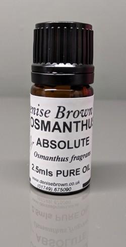 Osmanthus Absolute (2.5mls) Essential Oil