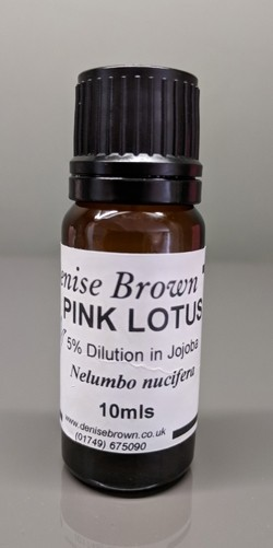 Pink Lotus Absolute 'TYPE' Dilution (10mls) Essential Oil