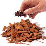 Sandalwood (2.5mls)