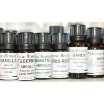 Champaca Abolute 'TYPE' (2.5mls) Oil