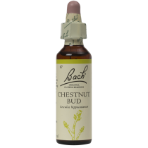 Chestnut Bud 20ml Original Bach Flower Remedy