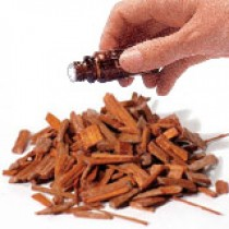 Sandalwood 5% Diluted (10mls) Essential Oil