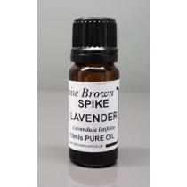 Spike Lavender  (10mls) Essential Oil