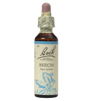 Beech 20ml Original Bach Flower Remedy