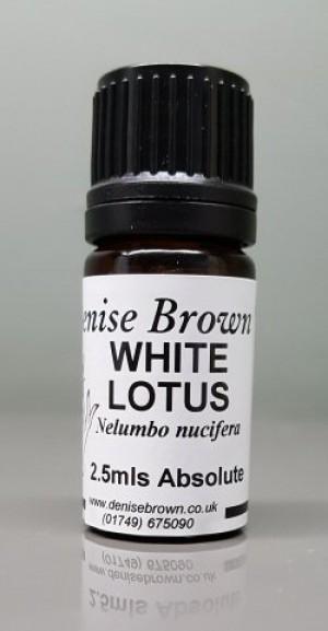 White Lotus Absolute (2.5mls) Essential Oil