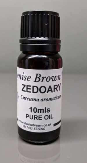 Zedoary (10mls) Essential Oil